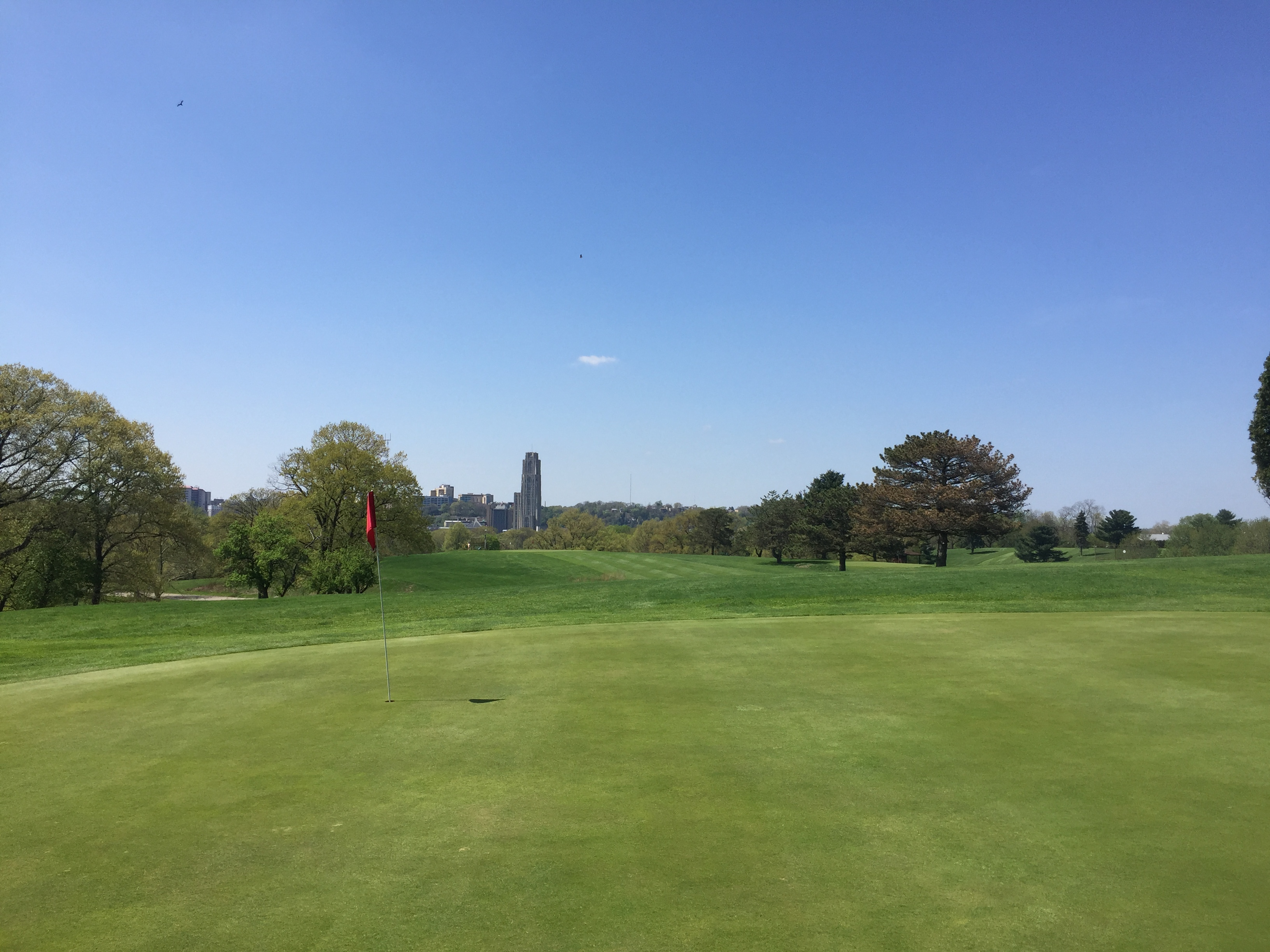 Hole 15 Cathedral of Learning Spring